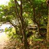 Abunze Coast05