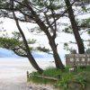 Hamagurihama Beach02